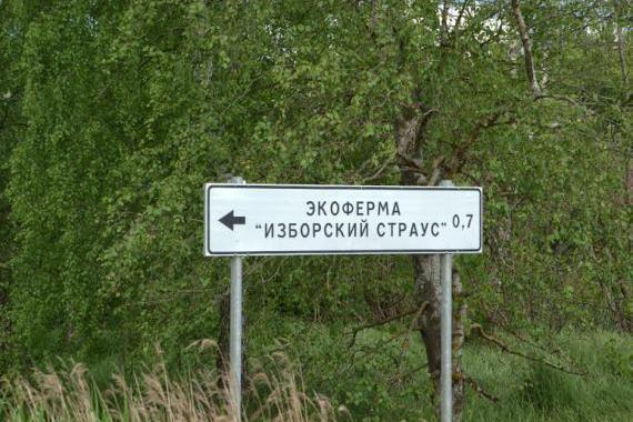 "Ферма ""Изборский страус"""